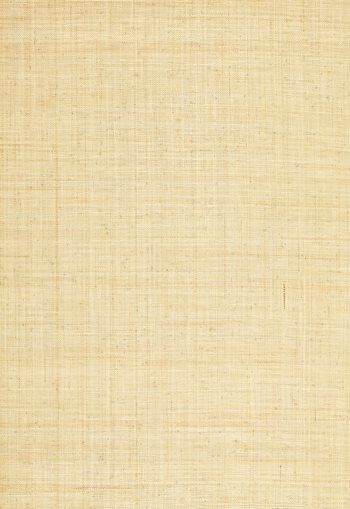 5006200 Weston Raffia Weave Natural by Schumacher