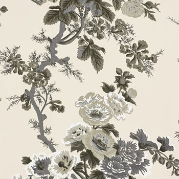 5006920 Pyne Hollyhock Charcoal by Schumacher