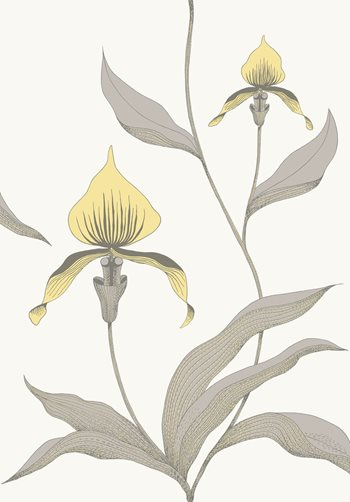 95/10057.CS Orchid Yellow/White by Cole & Son