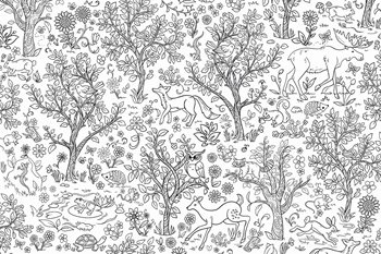 DWM2258 Wilderness Coloring Wall Mural by Brewster